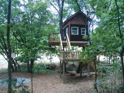 Maple Oak Tree house